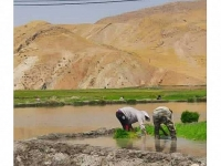 خوزستان سیراب شد؛ هیچ نقطهای اکنون بدون آب نیست