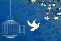 رهایی یک محکوم به قصاص از چوبه دار با تلاش شورای حل اختلاف قزوین
