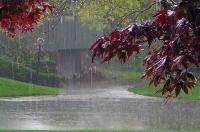 پیش بینی پنج شنبه و جمعه بارانی/ ۲ استان گرم و سرد کشور